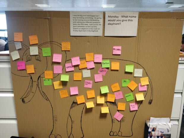 A large square of cardboard in an office with an elephant drawn on it. The elephant is almost covered with different coloured post-it notes.